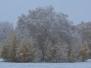 Первый снег в монастыре