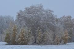 ©Alexander Bud - Ачаирский Женский Монастырь!!!(1)